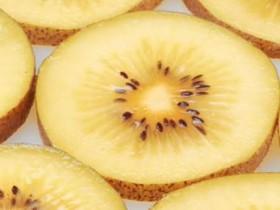 今天把最新黄心猕猴桃的品种给大家梳理一下